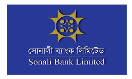 Sonali Bank gets ownership of Hallmark's 3,834 decimal land