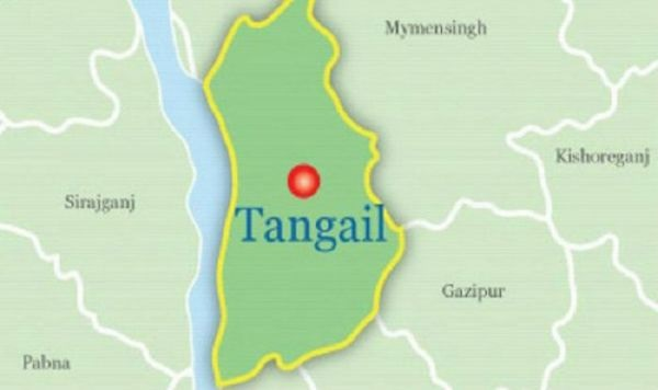 Ansar man among 2 killed in Tangail road accident