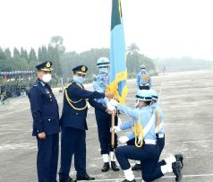 BAF colour awarded to different units, squadrons
