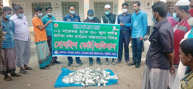 50 kgs of jatka seized in Bhola