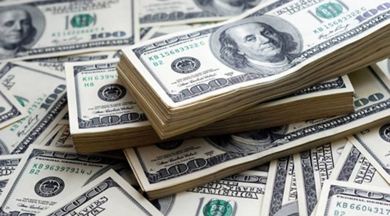 Forex reserves hit record high of over $43 billion
