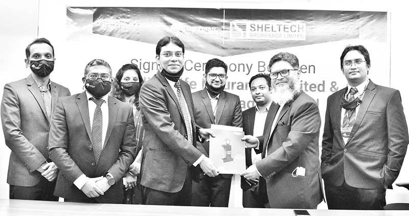 Sheltech Brokerage Ltd Chief Executive Officer