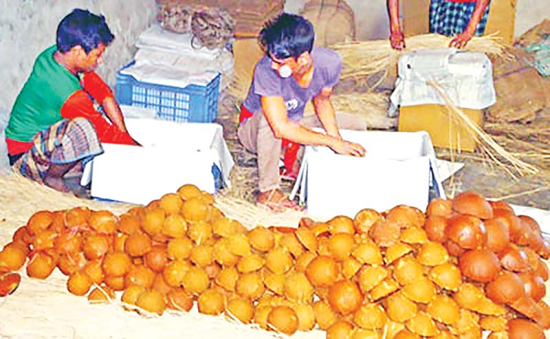 The photo shows date molasses ready for sale in Bagha.photo: observer
