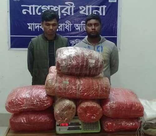 2 held with 33 kg hemp in Kurigram