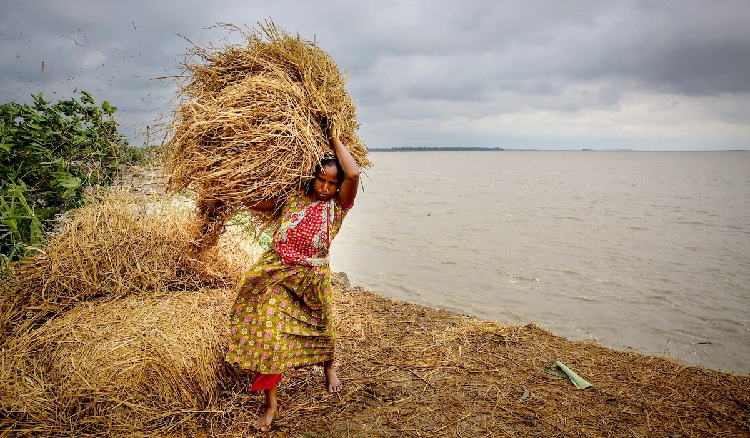 A woman in Bangladesh uses bales of straw to try to protect a riverbank that is eroding away from floodwaters. Much of the country is ground zero for a global climate crisis. Panos Pictures