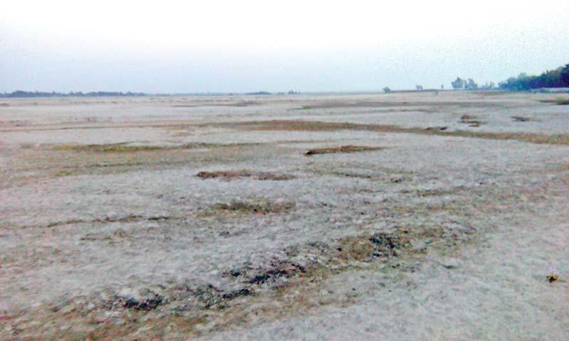 Teesta River turns sandy at Jaldhaka