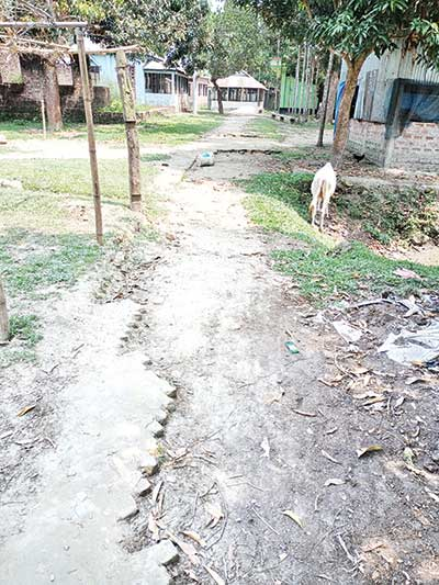 The photo shows the road, from which bricks were taken away.photo: observer
