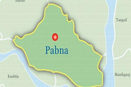Van puller killed as microbus hits in Pabna