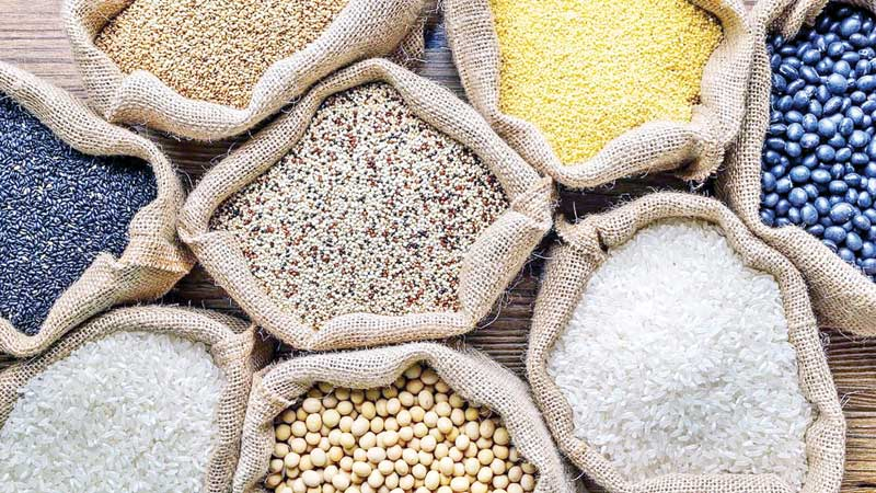 Quinoa: Cultivating the 'mother of all grains'