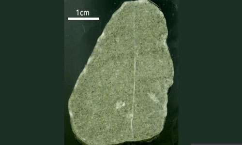 A small green rock's warning about our future