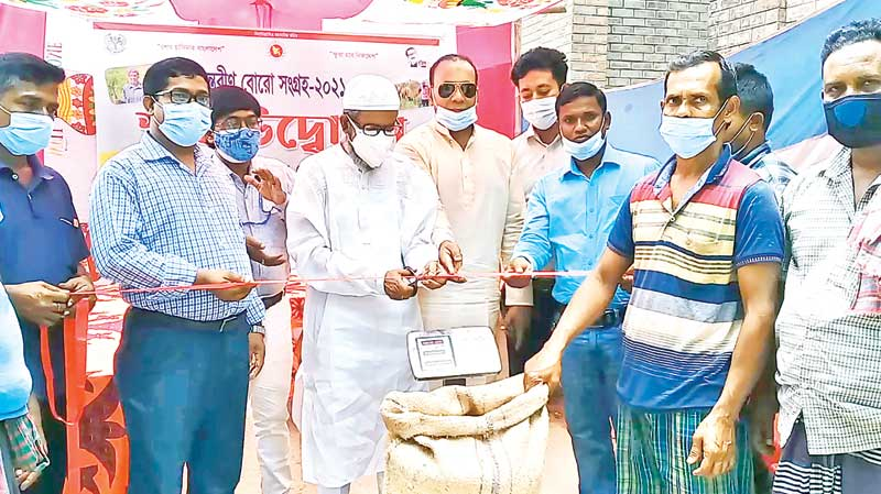 Government started procuring paddy from local farmers with Tk 27 per kg