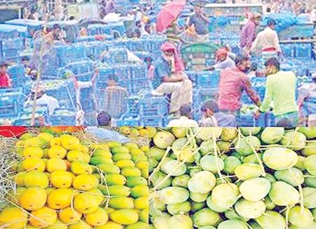 The photo shows a mango market in Sapahar Upazila of Naogaon.photo: observer