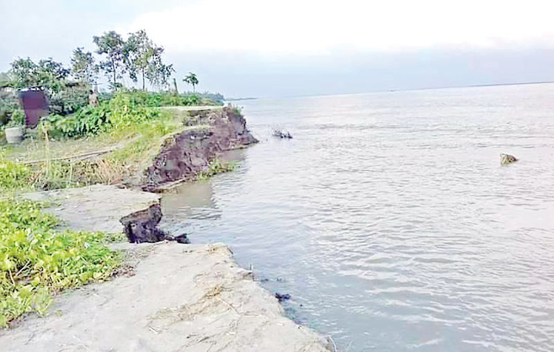 The photo shows erosion by the Jamuna River in Sirajganj. photo: observer