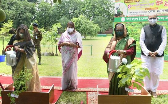 Plant more trees for greener future: Hasina
