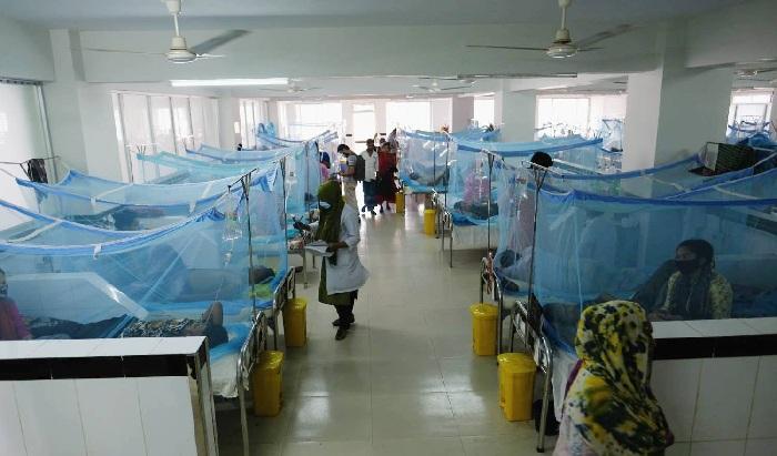 Three dengue patients die, 288 more detected in 24 hours